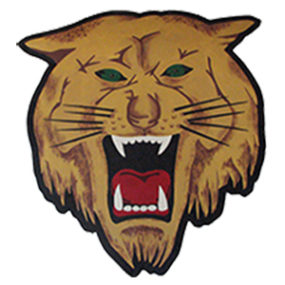 salem-wildcats